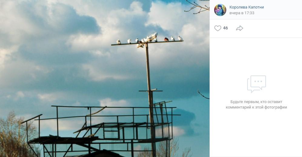 """Жительница района провела экскурс в историю голубятен Скриншот со страницы """"Королева Капотни"""", ВК. Фото: Диляра Минрахманова"""