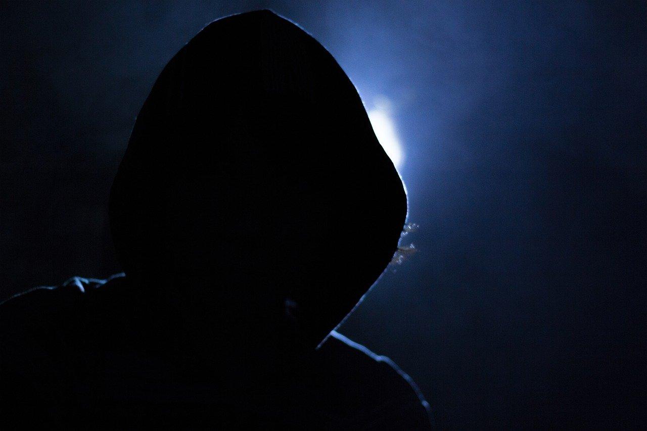 Капотнинские полицейские разыскивают кибер-мошенников Фото: pixabay.com